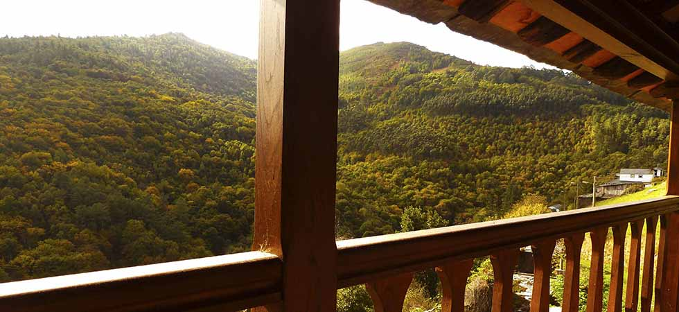 Apartamento El Bosque Vista del Monte